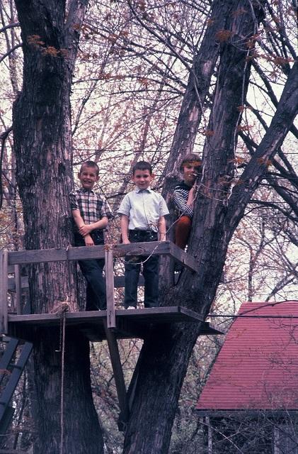 Libertyville, Illinois treehouse