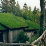 Troldsalen roof