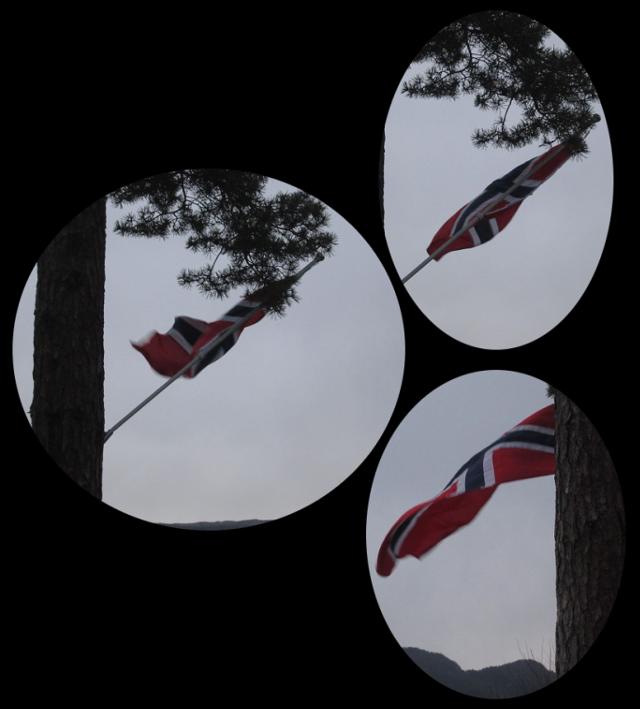 windy Norwegian flag!