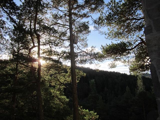 Morning sunrise over Ulvenfjellet