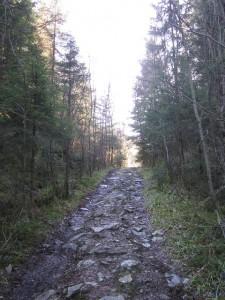 March 1, 2014 - Ulvenfjellet walk