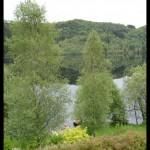 June 2006 - Osterøy