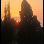 August 16, 2014, 7:50 am - Spanish summer light